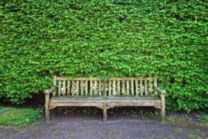 Die Top Sichtschutz Und Raumteiler Fur Den Garten Gartentest Com