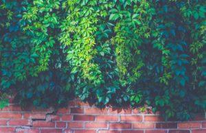 Steinmauer Raumteiler Sichtschutz Garten