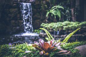 Wasserelemente im Garten